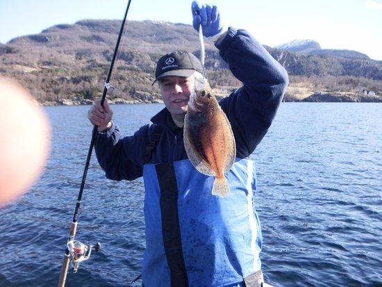Fjord Norge, Norge: Angeln ist mein Hobby hier bei Nesvik gegenüber der Insel Ombo