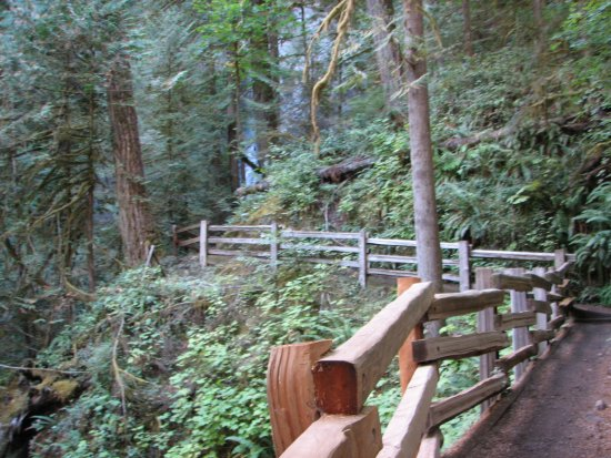 Port Angeles, Waszyngton: As the Trail Starts to Steepen