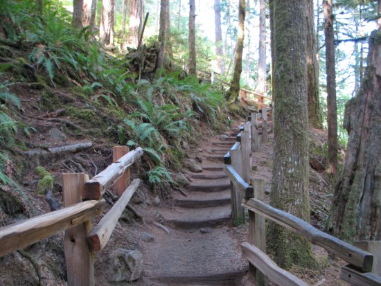 Port Angeles, Waszyngton: Getting Steeper