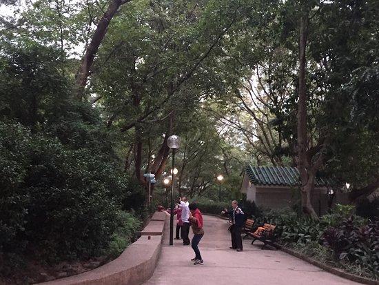 Kowloon Park: 11月下旬 朝6時30分頃からジョギング。 アップダウンもありいいコース。太極拳をされてる方もたくさんいて安心して走れると思います。
