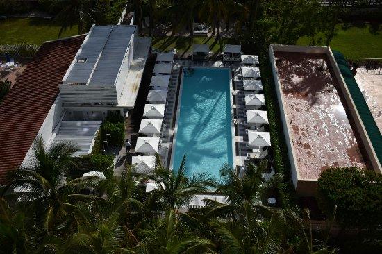 COMO Metropolitan Miami Beach: Piscina vista dalla terrazza panoramica