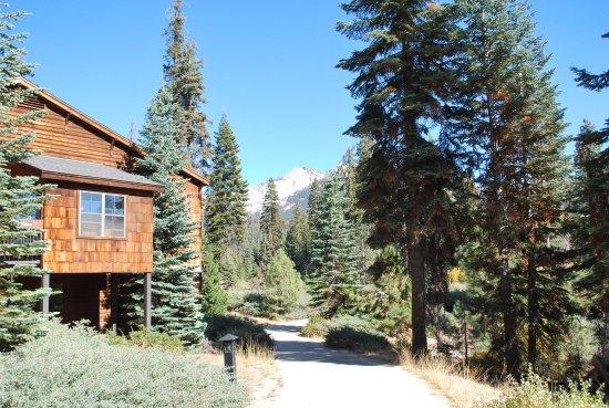 Wuksachi Lodge Φωτογραφία