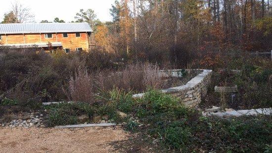 Chapel Hill, Carolina do Norte: photo9.jpg