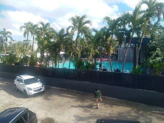Blue Marlin Motel: IMG_20171124_140857_large.jpg