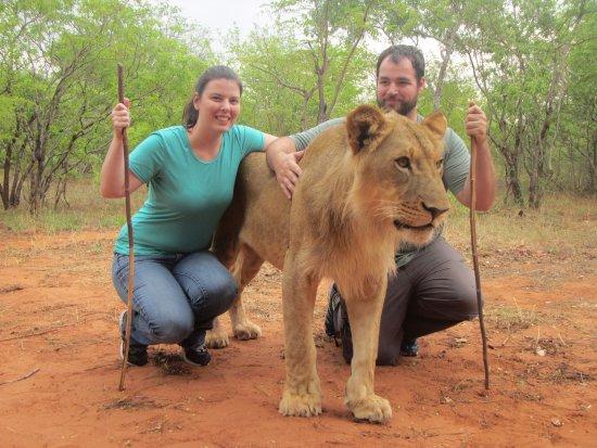 Mukuni Big 5 Safaris: This is Milo