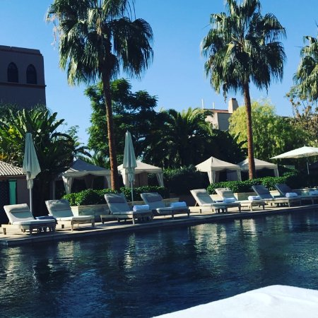 Four Seasons Resort Marrakech: Piscine adulte