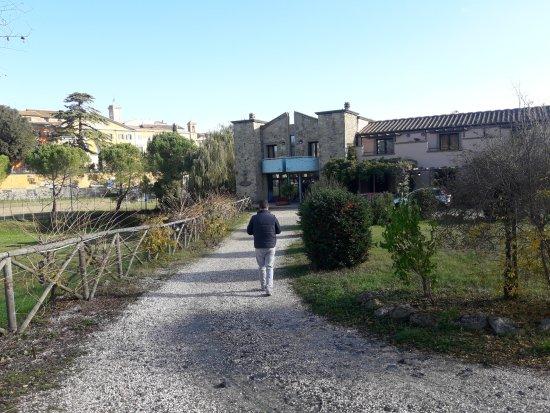 Pomarance, Italia: Vialetto d'ingresso