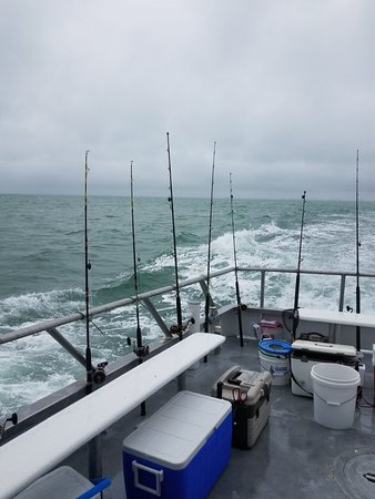 Queen fleet deep sea fishing clearwater all you need for Fishing clearwater fl