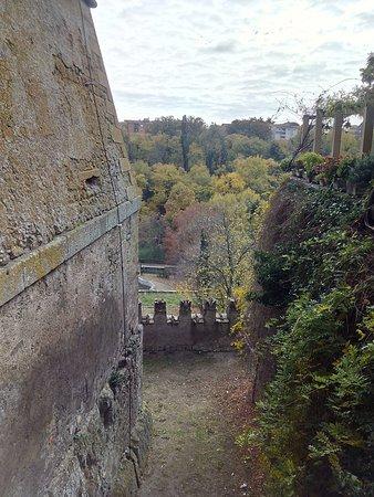 Castello Ruspoli: IMG_20171122_121450_1_large.jpg