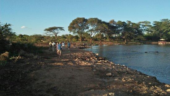 Voyager Ziwani, Tsavo West: IMG20171126174247_large.jpg