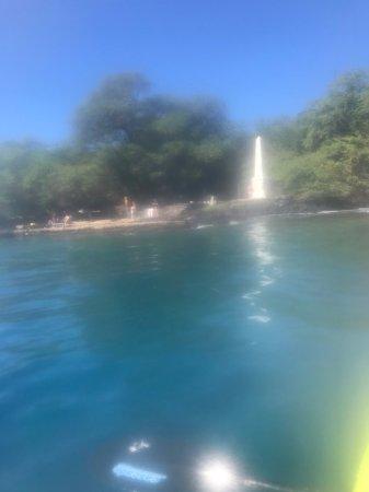 Honaunau, HI: snorkel