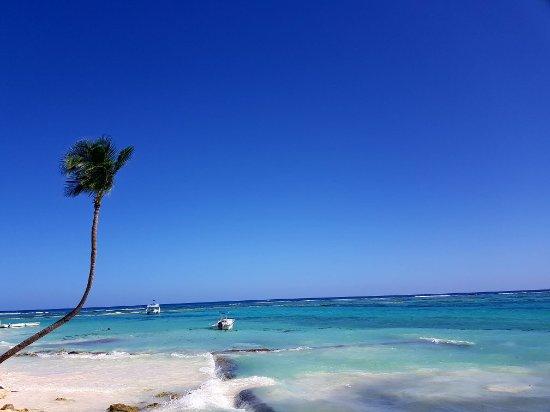 Club Med Punta Cana: 20171122_122911_large.jpg