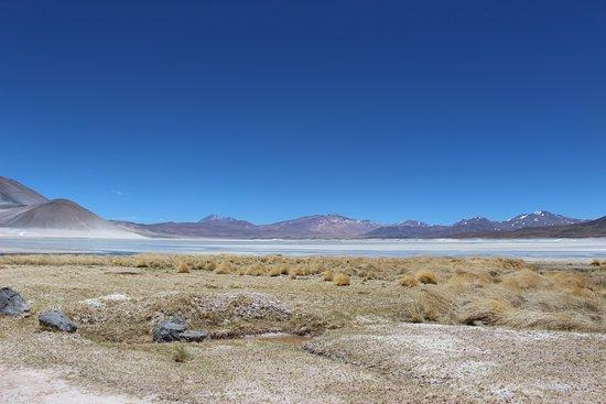 Tierra Atacama Hotel & Spa: Lunch view from Blue Lagoon