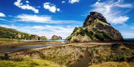 One of Auckland's black-sand beaches, Piha Beach.