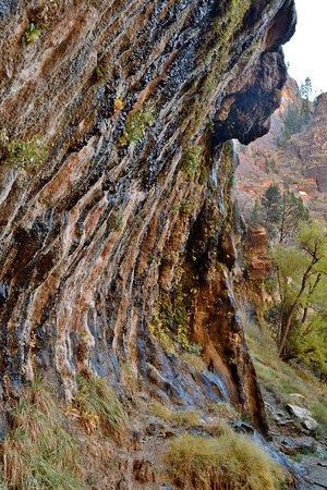 Weeping Rock Trail : Weeping Rock