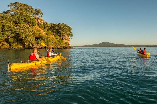 Auckland, New Zealand: Sunset kayaking to Rangitoto Island.