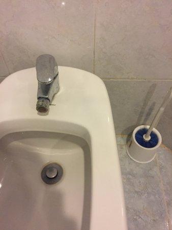 Viva Wyndham Dominicus Beach: Ecco i sanitari del bagno...