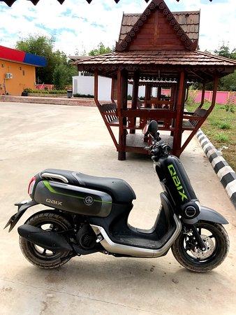 Wang Wang Motor Rental