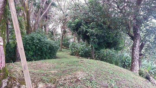 Isla Boca Brava, Panamá: Hiking