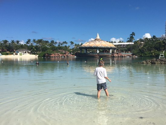 Atlantis - Harborside Resort: You can snorkel in the lagoon - great for beginners.