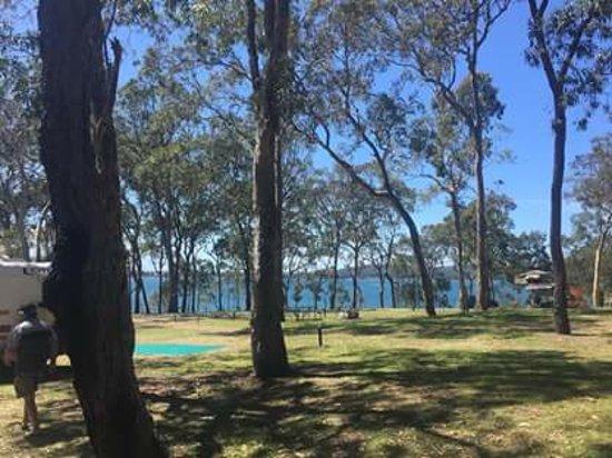 Wangi Wangi, Australia: Shady trees, lovely views