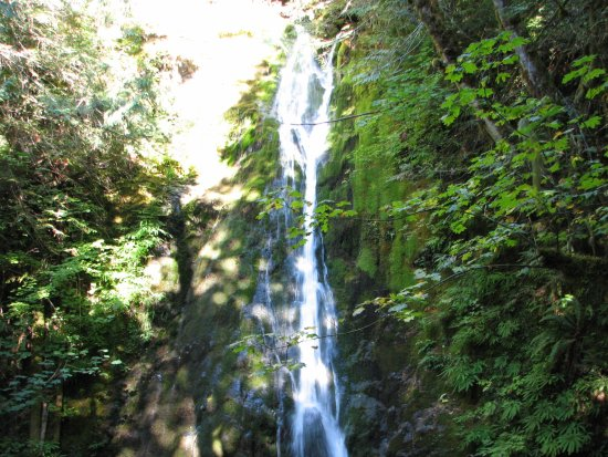 Port Angeles, Waszyngton: The Falls