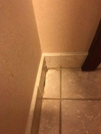 Goshen, IN: Dirty bathroom floors