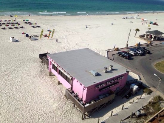 Pink Pony Pub - World Famous Beach Bar