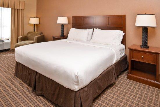 Holiday Inn Express McCall King Room