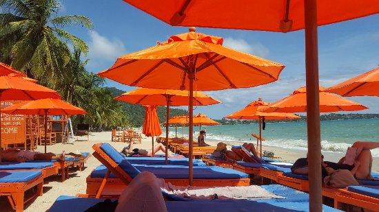 Rich Resort Beachside Hotel : 20171122_122607_large.jpg