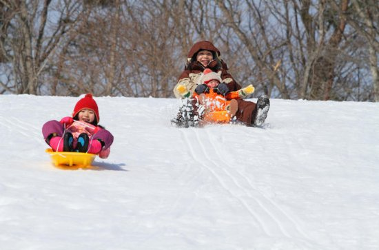 Ski Resort Sledding and Strawberry