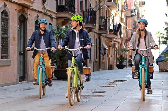 Small-Group Montjuic E-Bike Tour in...