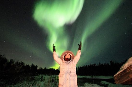 Rovaniemi Northern Lights Private...