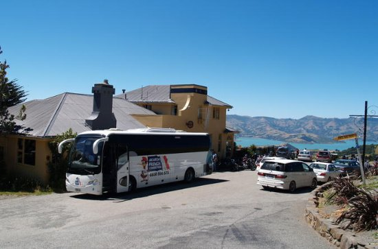 Akaroa 2-Hour Sightseeing Tour with...