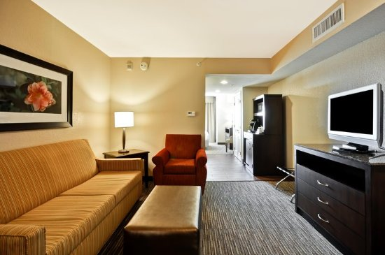 Seating area in a suite kuva hilton garden inn tampa for 13305 tampa oaks blvd temple terrace fl 33637