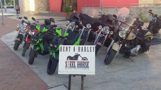 Steel Horse Motorcycle Rental and Tours.  Costa Maya