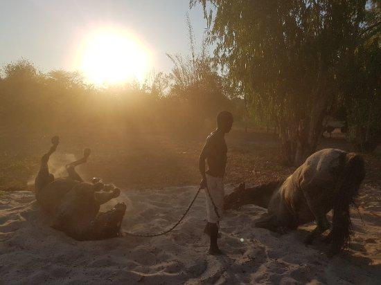 Nkhata Bay, Malawi: 20171015_165828_large.jpg