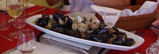 Konoba Dalmatino : Mussels, shells