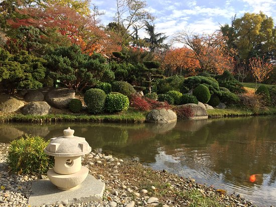 Jardin japonais toulouse all you need to know before for Jardin japonais toulouse