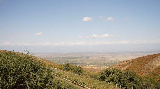 Bodbe Monastery of St. Nino: Вид на Алазанскую долину