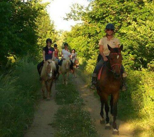 Karditsa, Grecia: Βόλτες ελεύθερης ιππασίας για όλους.