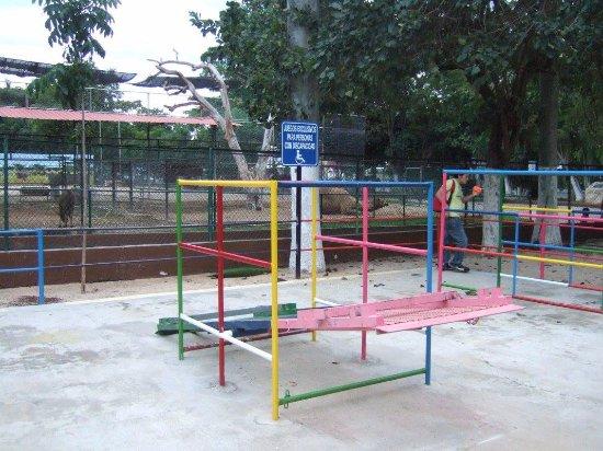 Zoological Park of Centenario ( Parque Zoologico del Centenario) : Aire de jeu adaptée aux enfants en fauteuil
