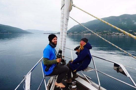 Indigo Blue Sailing: MDP survey