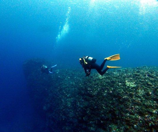 Miyakojima Diving Service Summer Party: 本ドロップでの一枚
