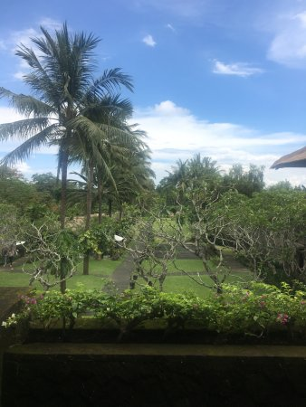 Maya Ubud Resort & Spa: Photo of the view from the lobby looking down the resort.
