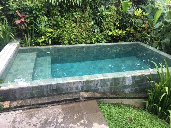 Maya Ubud Resort & Spa: Private plunge pool.