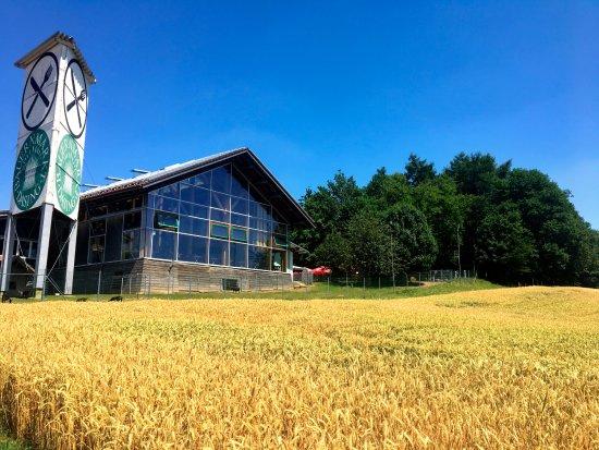 Dasing, Deutschland: Unsere Martkhalle