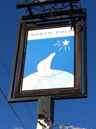Wateringbury, UK: Pub sign - definitely polar