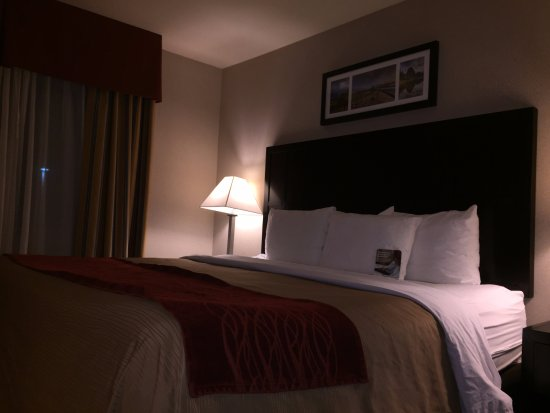 Comfort Inn Columbia Gorge Gateway: King Bed