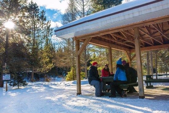 Mont Tremblant, Canada: Profitez de l'hiver en bonne compagnie!